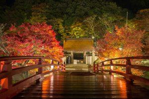 http://www.geocities.jp/kaigaishashin/dialy6/murouji.html